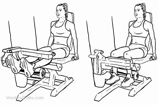 ACL Rehabilitation Exercises